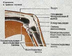 народные средства артрита сустава